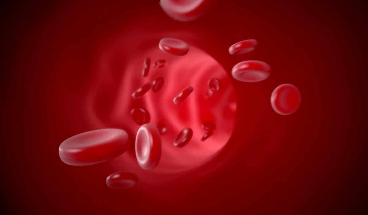 Blood Cell Sample for CJD Disease Detection